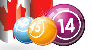 Bingo Free Money Gaming in Detail for Players